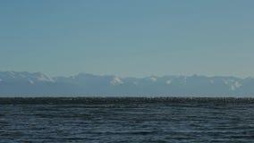 baikal jeziora Góra wierzchołki na stronie przeciwnej Doskonalić spokojnego błękitnego tło zapętlający zbiory wideo