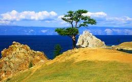 baikal jezioro Fotografia Royalty Free