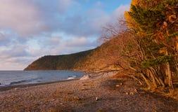 Baikal lake. October 2016, golden autumn. Near the village Large Goloustnoye stock photos