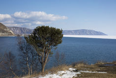 Baikal lake spring landscape view. Snow-covered shore of the lake. Rocky forested coastline. Boundary of ice and open. Water Royalty Free Stock Image