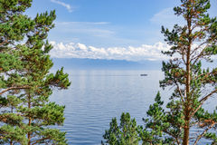 Baikal lake through the trees. Water landscape with ship, moderate mountains and light clouds on the horizon. Framed with green pine branches Stock Photos