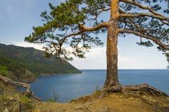 Baikal lake. Stock Photos