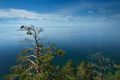 Baikal lake view. With trees and clouds royalty free stock photography