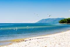 Baikal lakeside Stock Photos