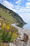 Baikal landscape Royalty Free Stock Photos