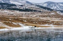 baikal marznący jezioro Odbicie góra lodowa powierzchnia na mroźnym dniu Naturalny tło Zdjęcia Royalty Free