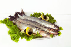 The Baikal omul. Fish fresh salted and lettuce are on the plate,  on white background Stock Photo
