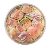 Baikal omul in oil with a dill Royalty Free Stock Images