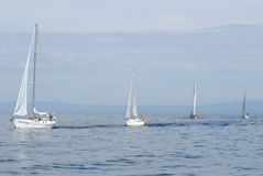 Baikal regatta Royalty Free Stock Photos