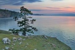 Baikal sunset. Olkhon island baikal Royalty Free Stock Photo