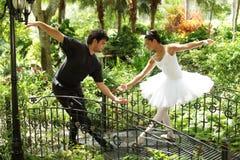 Bailado da dança dos pares no parque imagem de stock