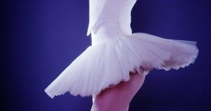Bailarín de ballet de la mujer que se coloca en tutú Fotografía de archivo