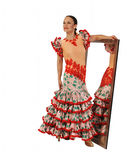 Bailarín de Flamenko Foto de archivo libre de regalías