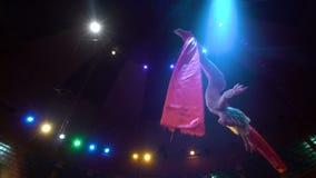 Bailarín de la mujer en la seda aérea, contorsión aérea, cámara lenta almacen de video