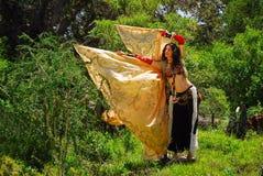 Bailarín de vientre gitano fotografía de archivo libre de regalías