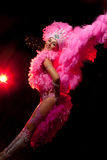 Bailarín del cabaret Imagenes de archivo