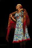 Bailarín del conjunto de la canción y de la danza de la música tradicional del estado de Tcherepovets Foto de archivo libre de regalías