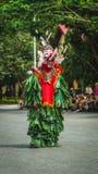 Bailarín del Dayak de Hudoq, tribu nativa de Borneo Fotos de archivo