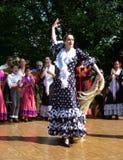 Bailarín del español de la mujer Imagen de archivo libre de regalías