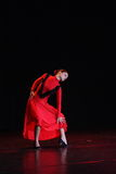 Bailarín del flamenco Fotografía de archivo libre de regalías