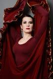 Bailarín del flamenco Imagen de archivo libre de regalías