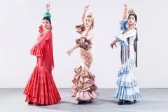 Bailarín del flamenco de bastante tres jóvenes en vestido hermoso fotografía de archivo