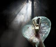 Bailarín famoso Yang Liping del chino Imagenes de archivo