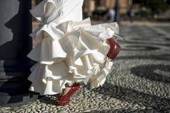 Bailarín joven del flamenco de la elegancia Fotos de archivo libres de regalías