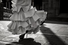 Bailarín joven del flamenco de la elegancia Fotografía de archivo libre de regalías