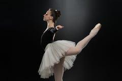 Bailarín moderno del estilo que presenta en fondo del estudio Fotos de archivo libres de regalías