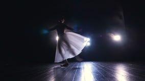 Bailarina agraciada que salta en la cámara lenta Silueta HD almacen de metraje de vídeo