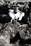 Bailarina da escalada de rocha Fotos de Stock
