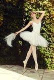 A bailarina dança sensualmente na natureza foto de stock