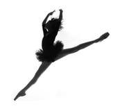 Bailarina fêmea no estúdio foto de stock royalty free