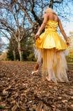 Bailarina fora Foto de Stock Royalty Free