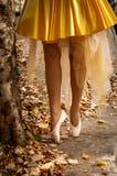 Bailarina fora Imagem de Stock Royalty Free