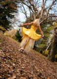 Bailarina fora Imagens de Stock Royalty Free