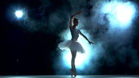 Bailarina graciosa que faz um exercício no video estoque