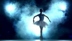 Bailarina graciosa que faz um exercício no