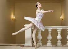 Bailarina no pose do bailado Fotos de Stock Royalty Free