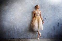 A bailarina nova em um traje de dança colorido dourado está levantando em um estúdio do sótão Imagem de Stock