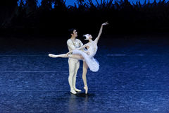 Bailarines de ballet del lago swan Foto de archivo