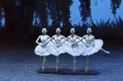 Bailarines de ballet del lago swan Imagen de archivo libre de regalías