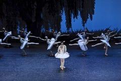 Bailarines de ballet del lago swan Imagenes de archivo