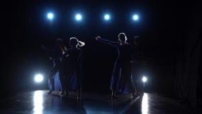 Bailarines de ballet diligentes que realizan elementos de baile del ballet moderno C?mara lenta metrajes