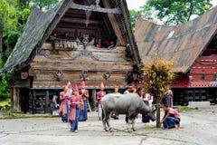 Bailarines tradicionales de Batak en el lago toba Fotografía de archivo