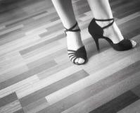 Bailarín del latín de la danza de salón de baile Imagen de archivo