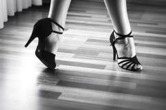Bailarín del latín de la danza de salón de baile Imágenes de archivo libres de regalías
