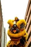 Baile amarillo del dragón en newyear chino Fotografía de archivo