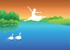 Baile con los cisnes imagenes de archivo